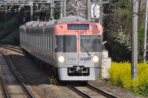 Rail10040306